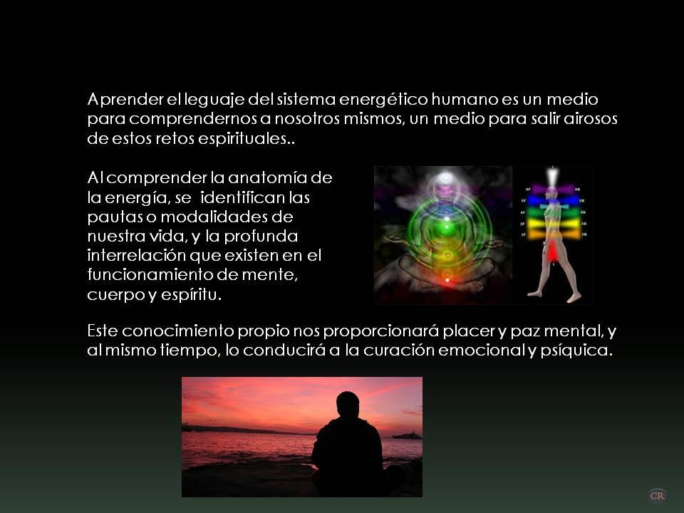Encantador Anatomía De La Paz Bosquejo - Imágenes de Anatomía Humana ...