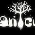 Jogos.: Humble Bundle - Botanicula