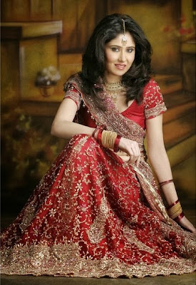 Indian Bridal Wear Red Lehega Choli