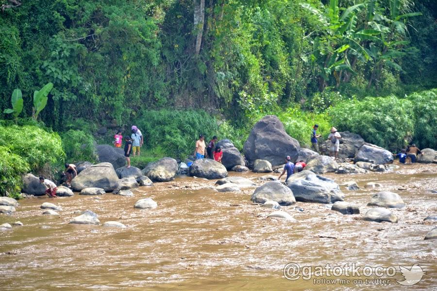 Menangkap ikan sekarat di sungai Serayu