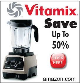 Vitamix and other Blenders - Reviews and Prices