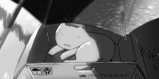 Kanojo to Kanojo no neko, Elle et son Chat - Tout passe, Actu Japanime, Japanime, Makoto Shinkai, Liden Films,