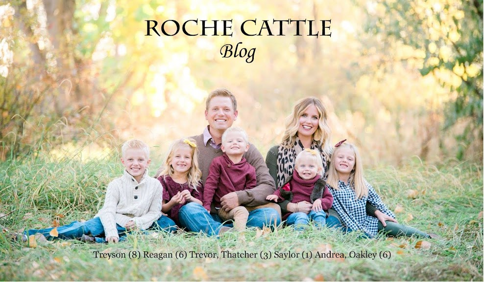 Trevor Roche 208-880-7676