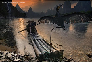 Chinese Fishing images