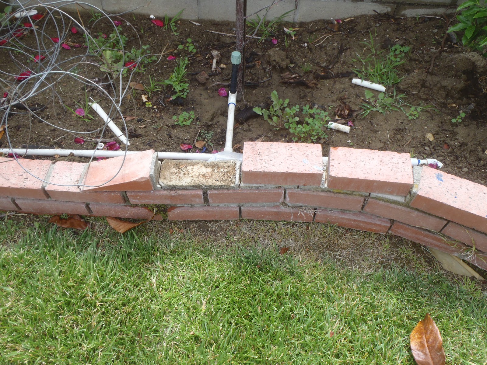 diy advisor backyard decorative brick border repair