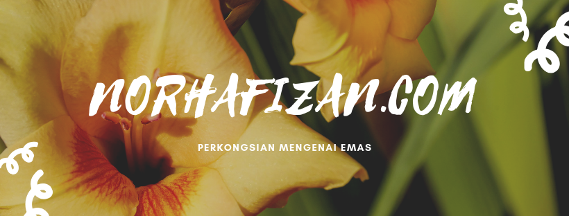 NorHafizan.Com