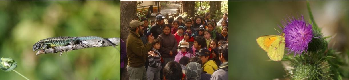 EDUCACION E INTERPRETACION AMBIENTAL PARQUE NACIONAL VILLARRICA