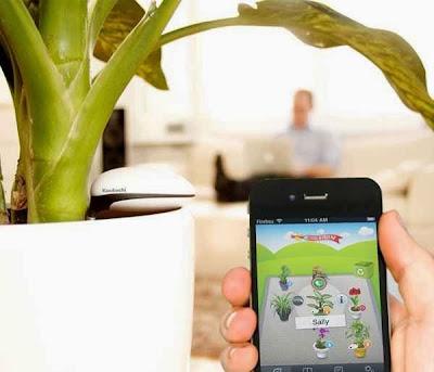Koubachi Sensor WiFi para Plantas