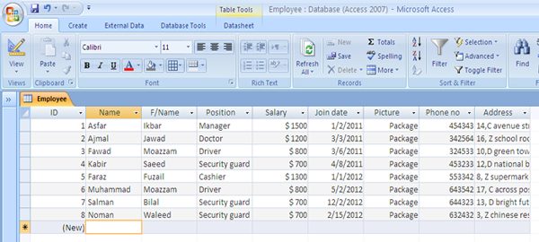 ms access employee database