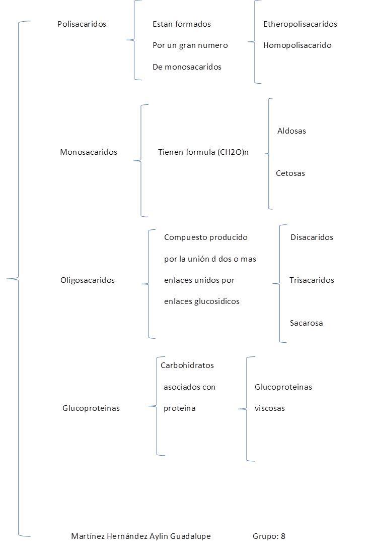 clasificacion de los esteroides biologia