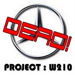 ex - Project : W210