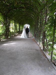A wedding photo-shoot in Schoenbrunn Palace grounds.