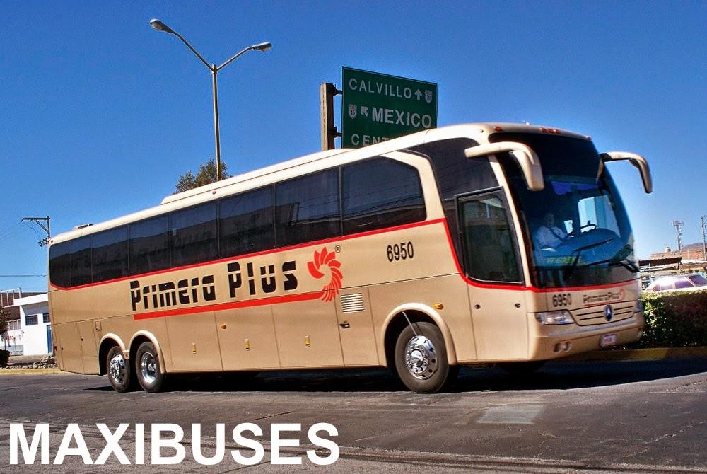 Maxibuses primera plus for Mercedes benz oc