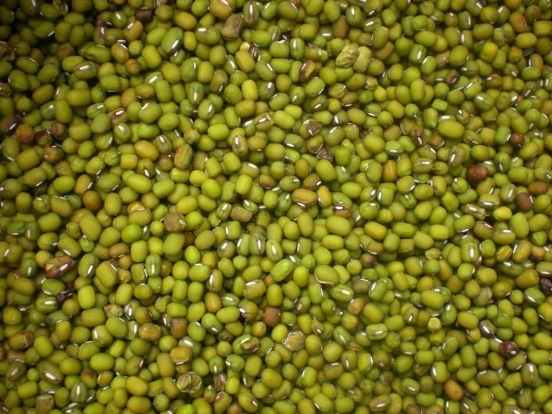 Kacang Polong Hijau