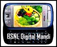 Digital Mandi