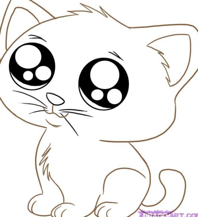 Cute Cartoon Animals to Draw Cat