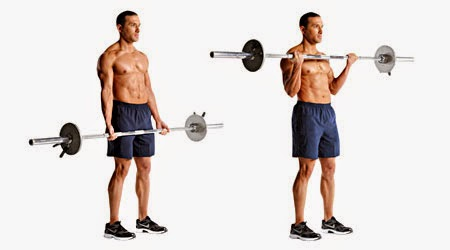 Ejercicios Para Aumentar Masa Muscular Rápidamente - Curl Bíceps