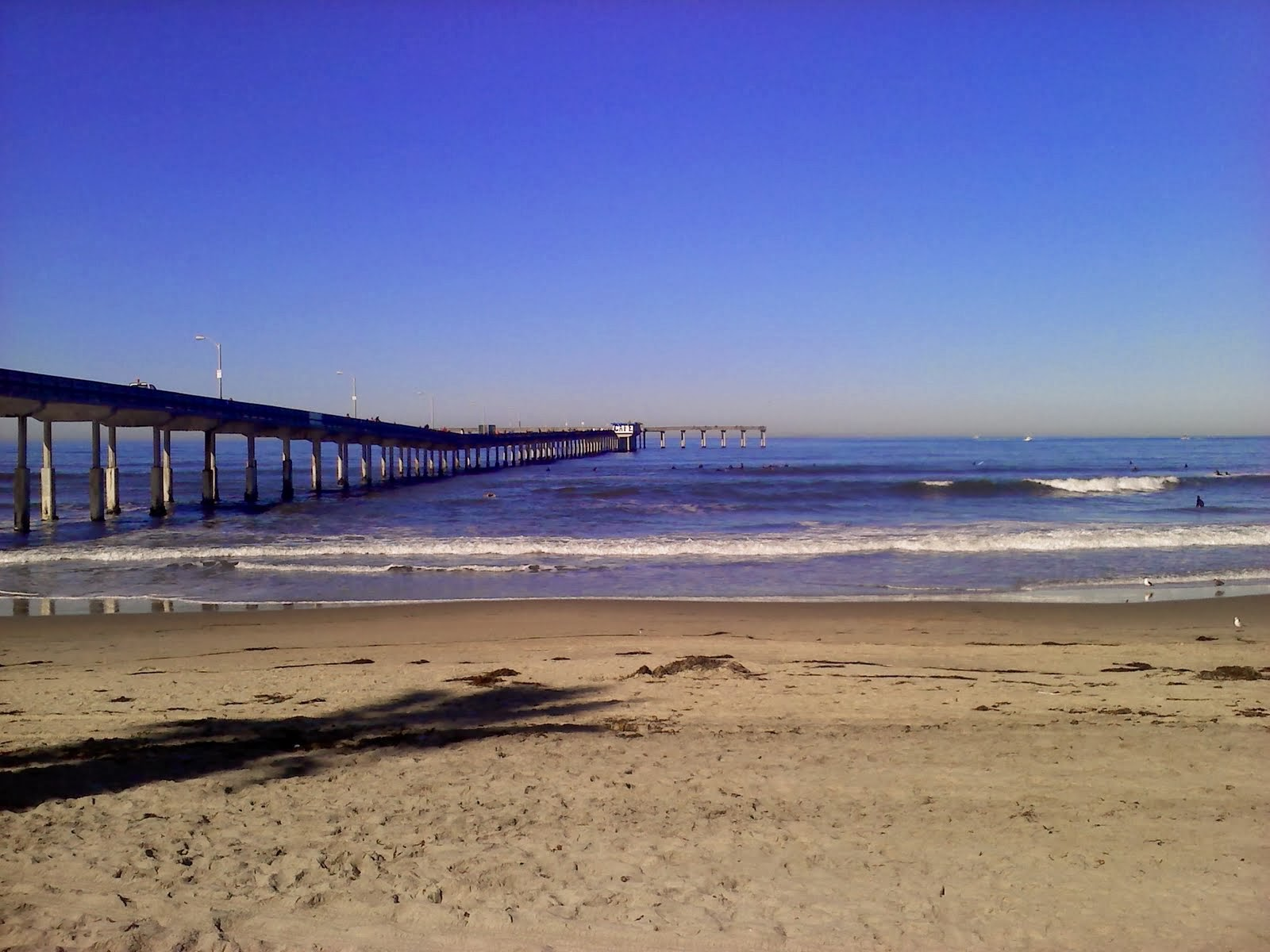 San Diego Beaches Bing Images