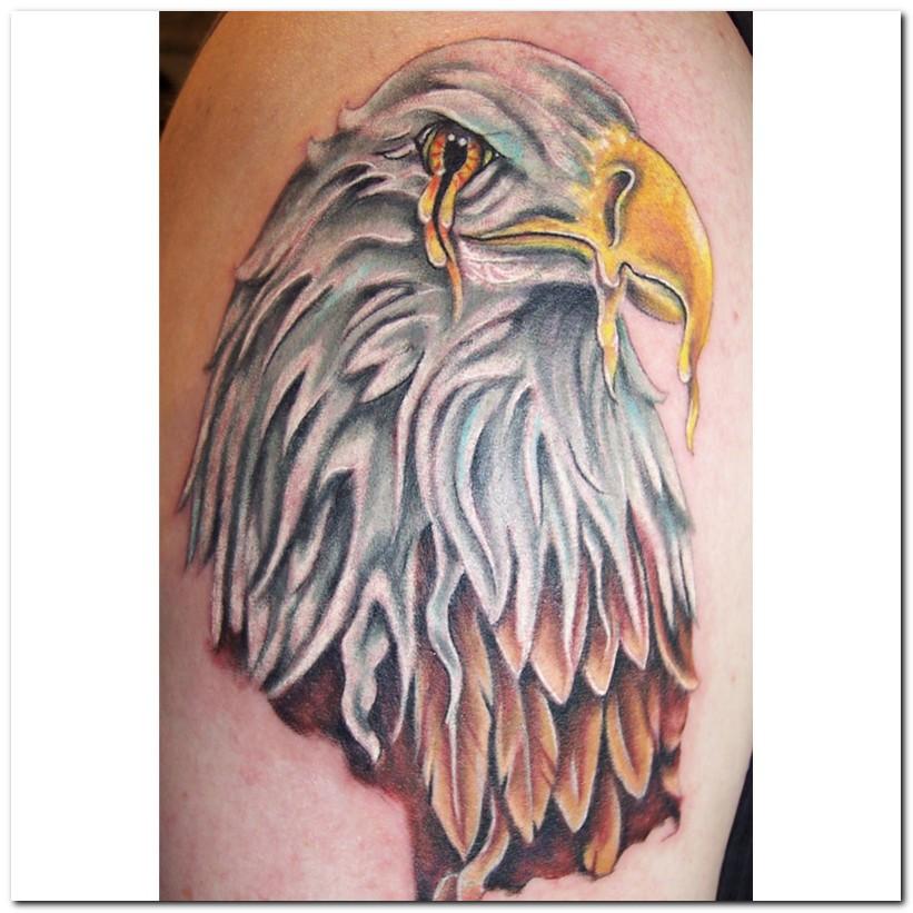 olive monkeys: Eagle tattoos designs free online