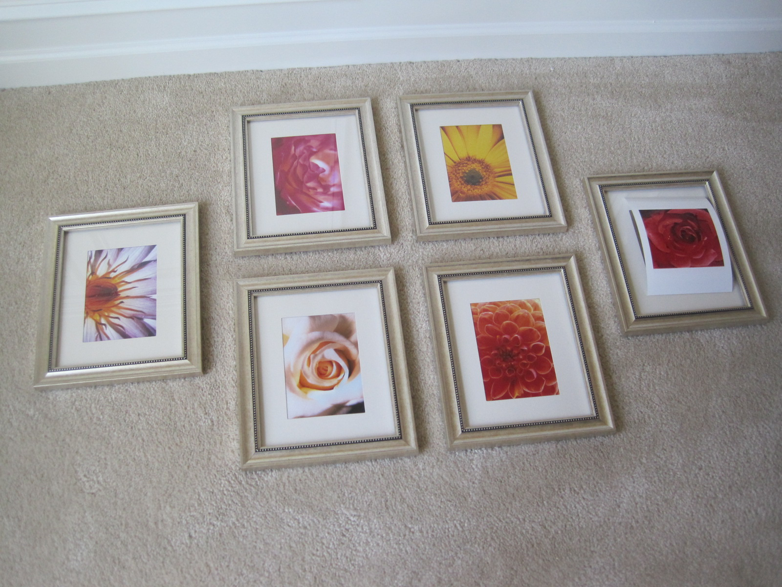 Designed to dwell flowers on the wall i used some 3 frames with mats from wal mart figured out the arrangement on the floor then we made lots of holes in the wall via trial error level jeuxipadfo Choice Image
