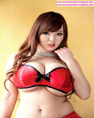 Hitomi Tanaka 43J Busty Boobs In Red Bikini amp; Bra Semi Nude Hot
