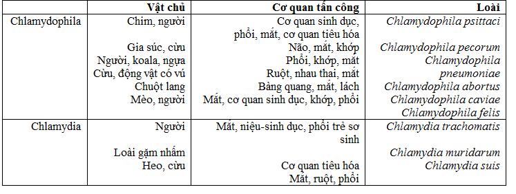 Bảng 1: so sánh giữa các phân lớp của Chlamydophila và Chlamydia