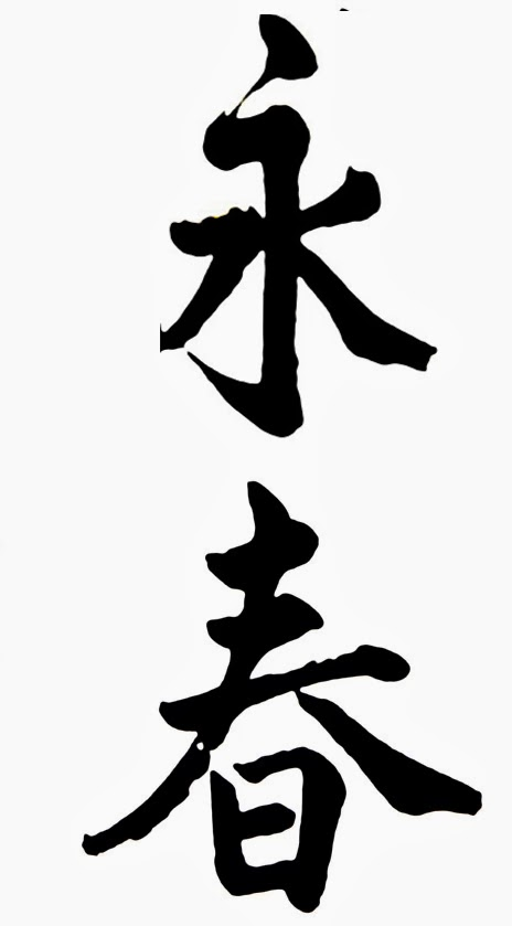 Ki Martial Arts Studio Translating Wing Chun