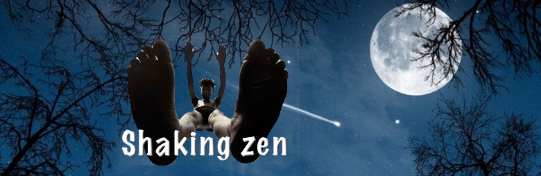 Shaking zen blog