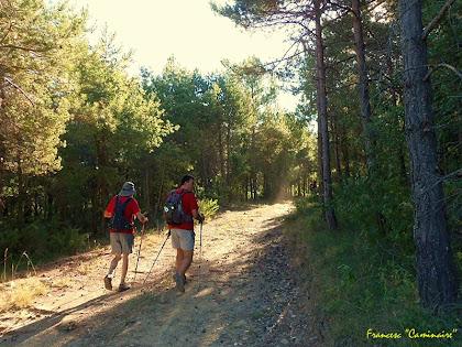 """Caminant entre la Serra i la Carena del Castell. Autor: Francesc """"Caminaire"""""""