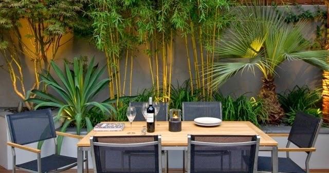 Bambus garten | Bambus Deutschland