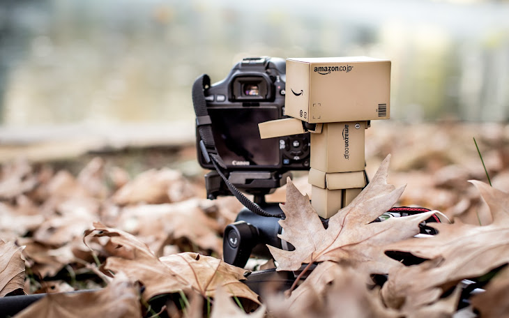 Danbo Autumn Shoot