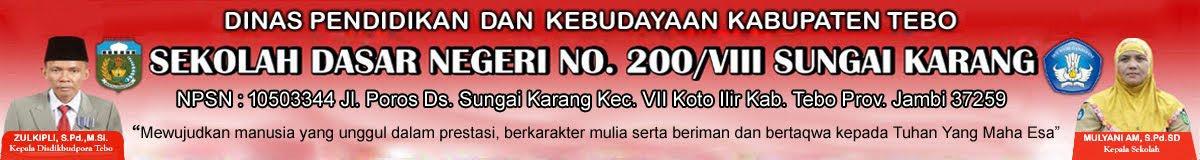 SDN 200/VIII Sungai Karang