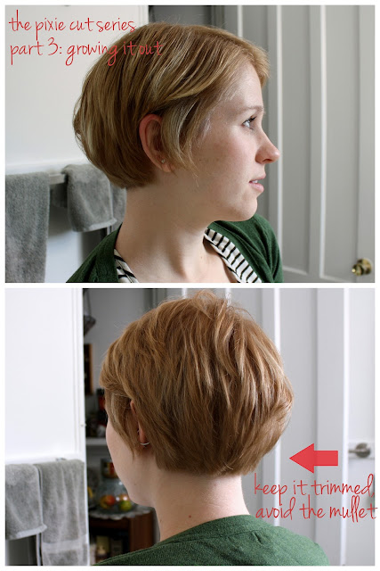 Hairstyles For Short Hair Trying To Grow It Out : Back of Hair Growing Out Pixie Cut