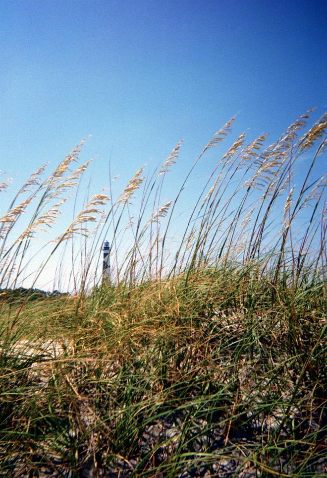 Cape Lookout Lighthouse, sea oats