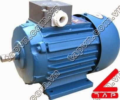 Động cơ điện 3 pha Y series