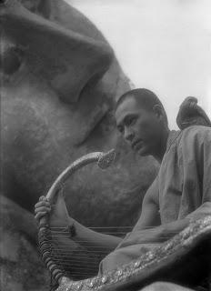 Burma Arpı