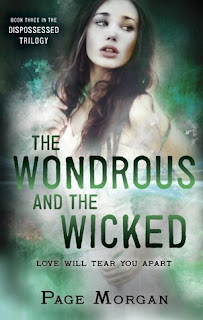 https://www.goodreads.com/book/show/21473811-the-wondrous-and-the-wicked