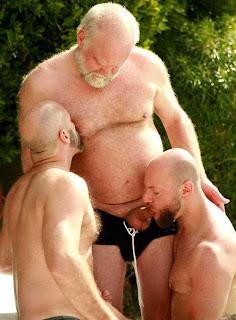 Ursos, maduros, coroas e velhos pelados, chupando pau, chupando cú, dando o cú …