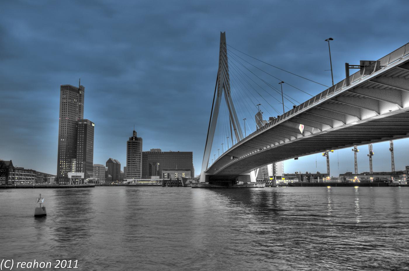 Erasmusbrug Erasmus Bridge Rotterdam The Netherlands