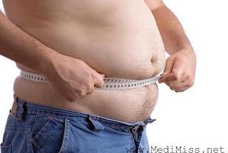 Anti-Obesity Diet