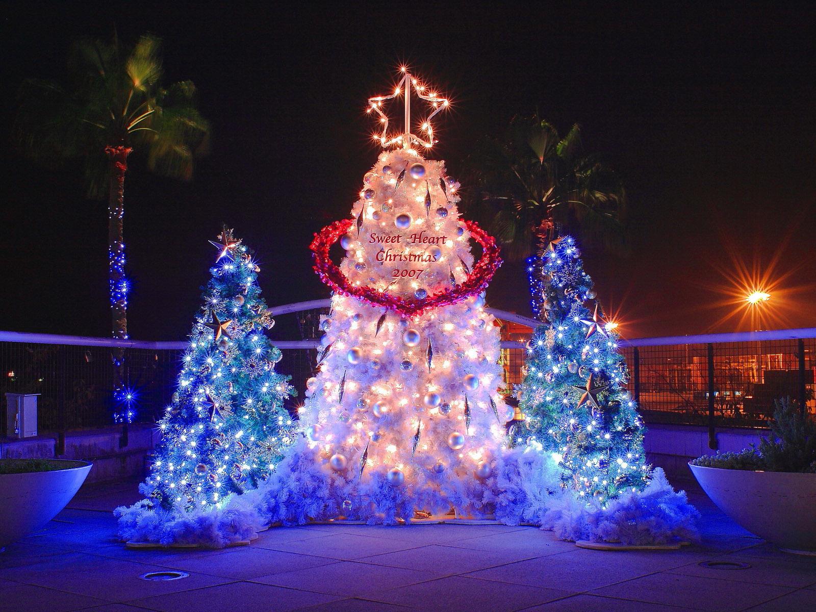 Designer S Choice Christmas Lights