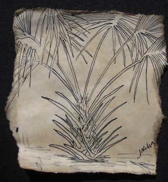 """""""Palm"""""""
