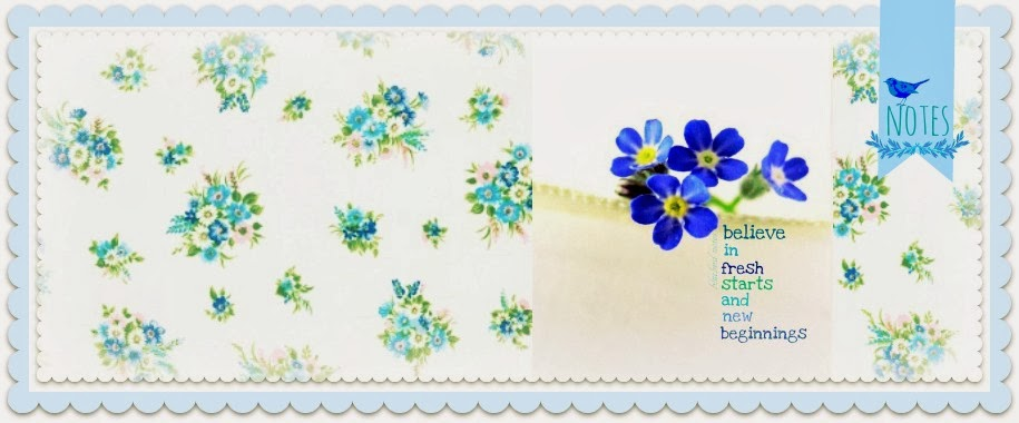 Bluebird Notes