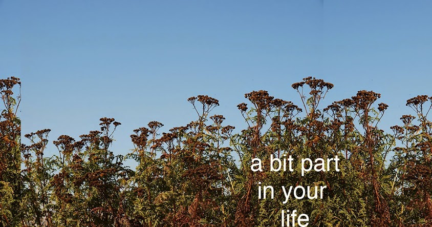 A bit part in your life