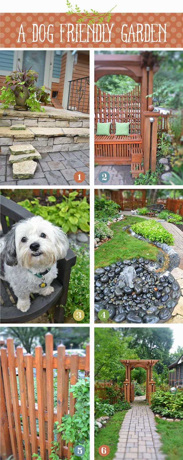 Lisa orgler design a dog friendly garden for Garden designs for dogs
