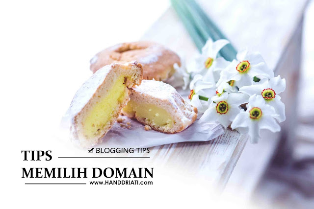 Tips Memilih Domain TLD