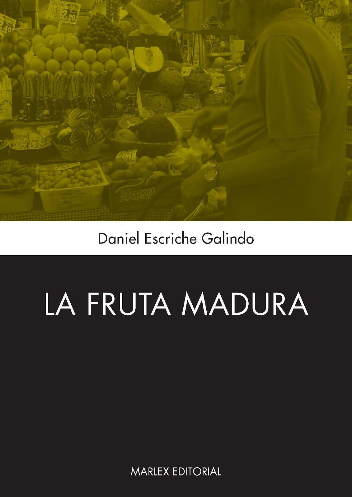 Mi primera novela editada en ebook