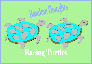 The Racing Turtle