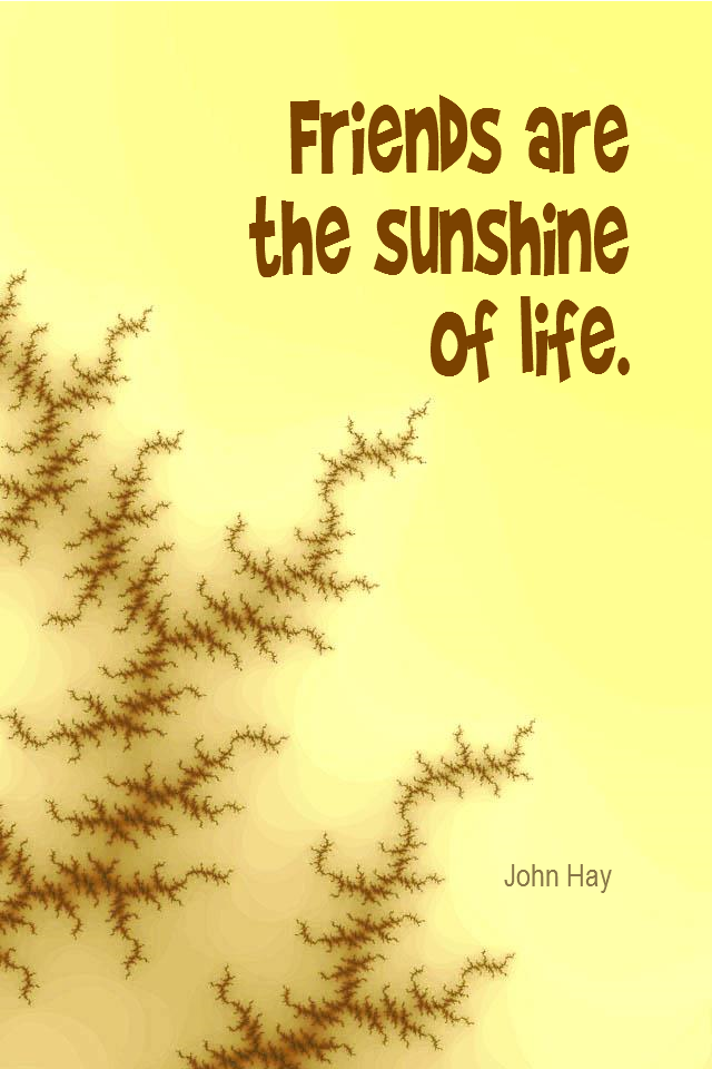 visual quote - image quotation for FRIENDSHIP - Friends are the sunshine of life. - John Hay