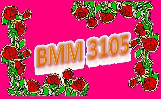 BMM3105